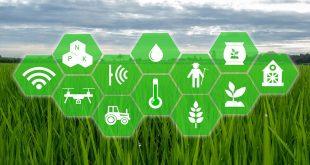 کشاورزی-هوش مصنوعی