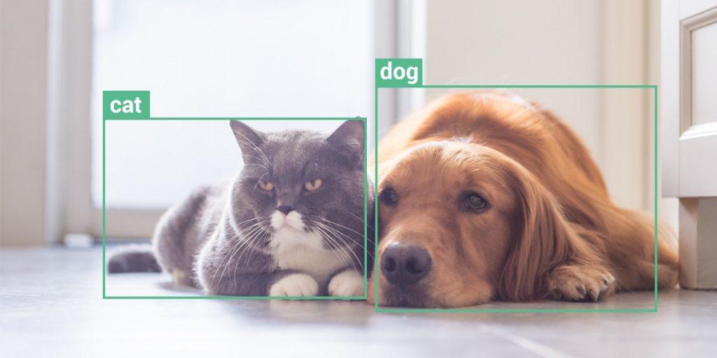 تشخیص حیوانات با دوربین هوش مصنوعی