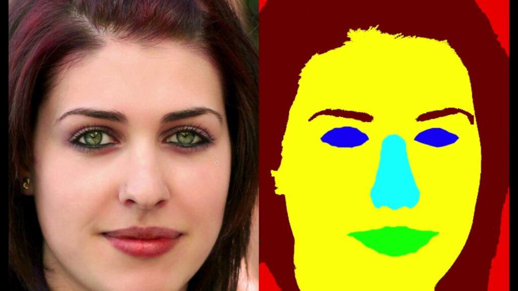 تصویر ناحیه بندی شده چهره