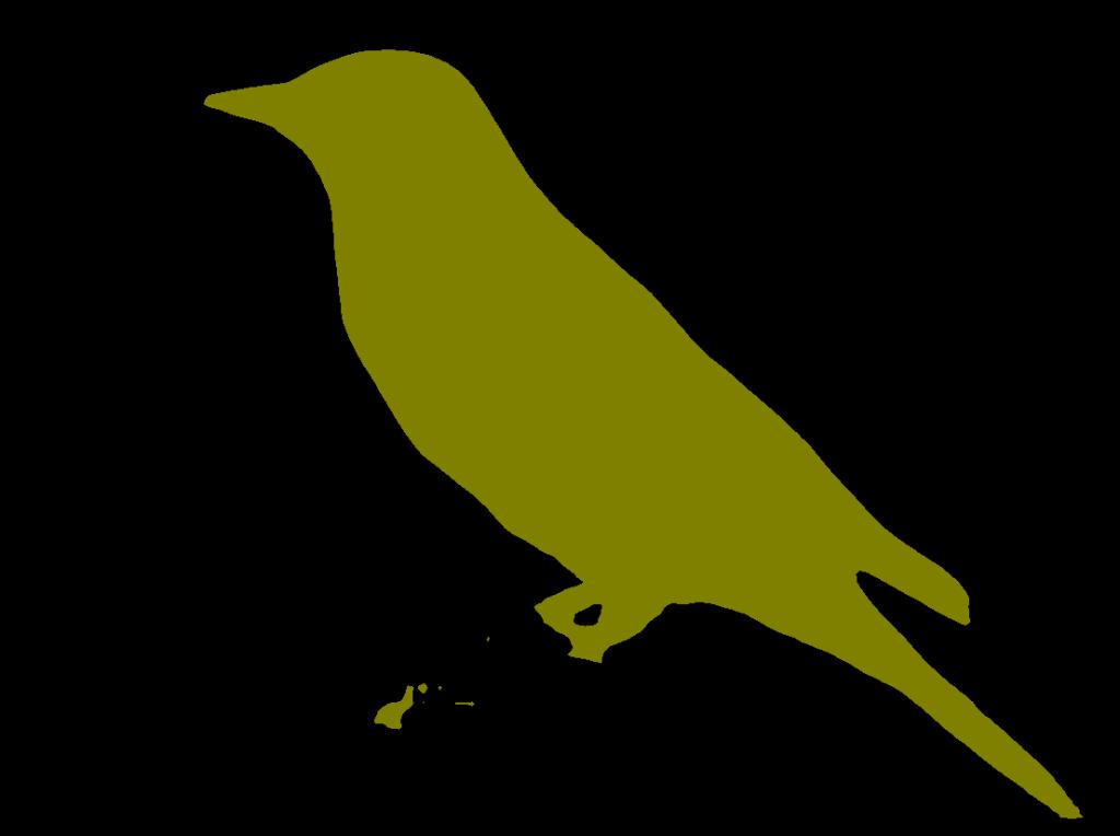 ناحیه بندی تصویر پرنده در PyTorch