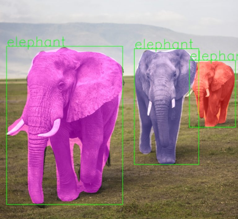 ناحیه بندی فیل ها در تصویر با Mask RCNN