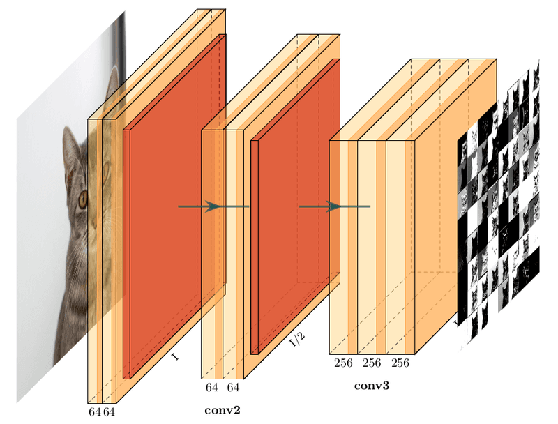 نمودار VGG16 برای فعال سازی های ورودی