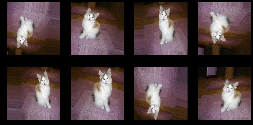 داده افزایی تصاویر گربه