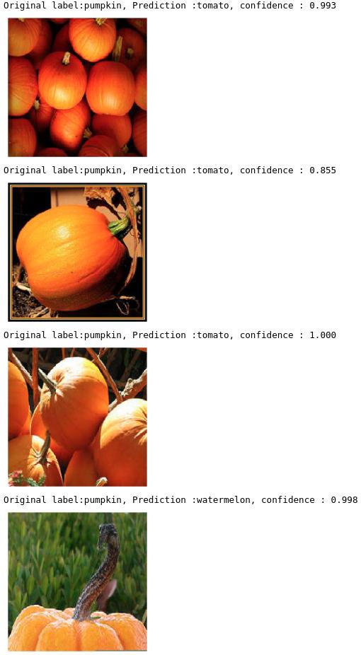 نتایج نادرست از تشخیص تصویر با یادگیری انتقالی