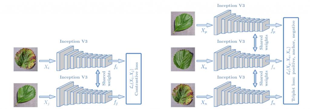 تشخیص بیماری گیاهان با شبکه عصبی